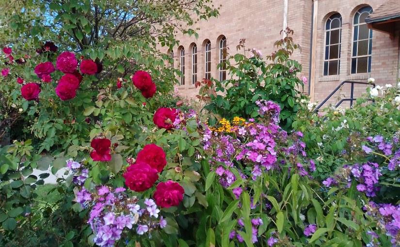 St. Ann Virtual Bulletin – 23rd Sunday of Ordinary Time – Sept. 6,2020